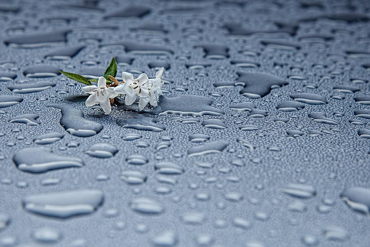 agua saludable ducha