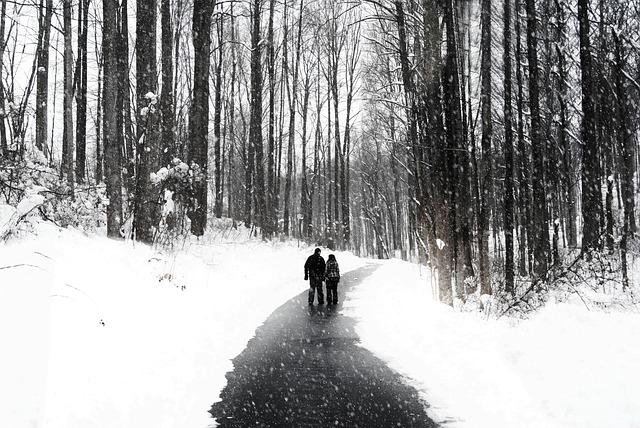 paseo nieve pareja