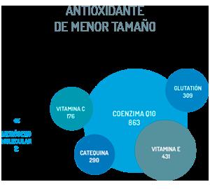 Antioxidante de menor tamaño