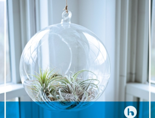 Aire limpio en tu hogar