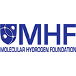 molecular hydrogen foundation